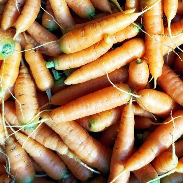FermedeKeruzerh-carottes-apéro