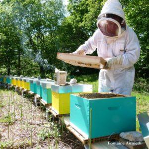FermedeKeruzerh-miel-printemps-ruches-Fontaine-Airmeth